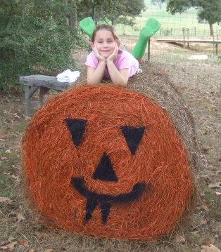 Haystack Pumpkin