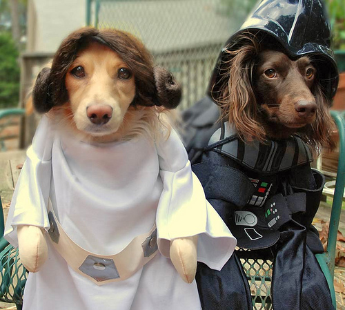 Leia Dog and Vader Dog